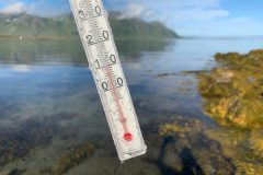 10-14 °C (50-60 °F) is normal water temperature