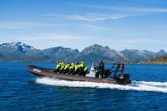 RIB safari to Trollfjorden, with sea eagle spotting, with XXLofoten